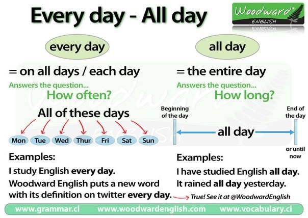 every-day-all-day-kullanimlari